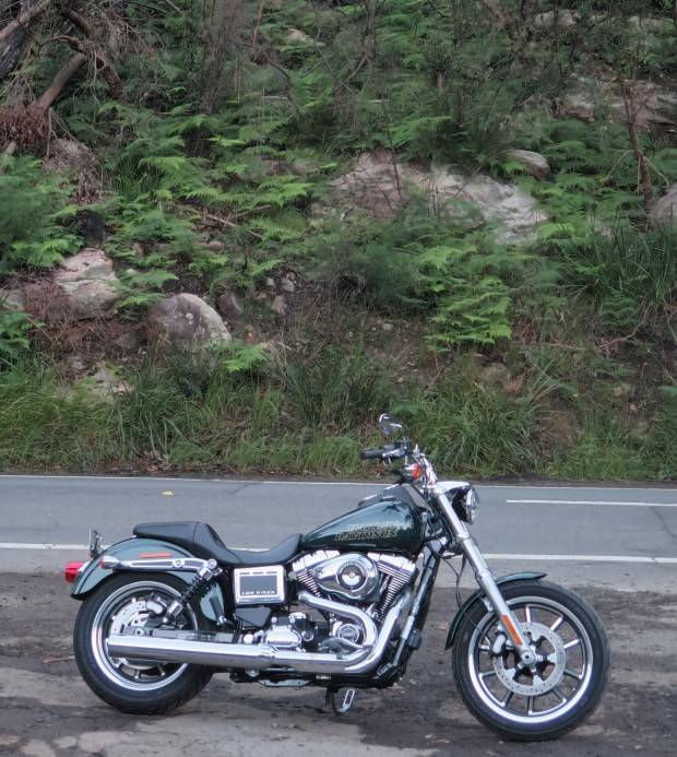 Harley Davidson M8 Forums